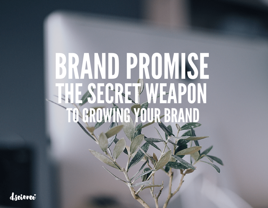 brand promise: the secret weapon to growing your brand - brand strategy