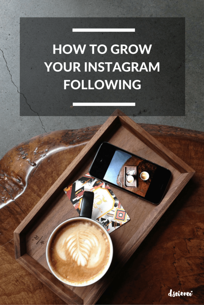 how-to-build-your-instagram-following