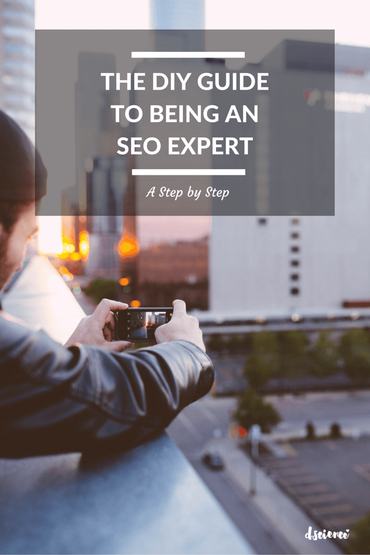 DIY guide to being an seo expertDIY guide to being an seo expert