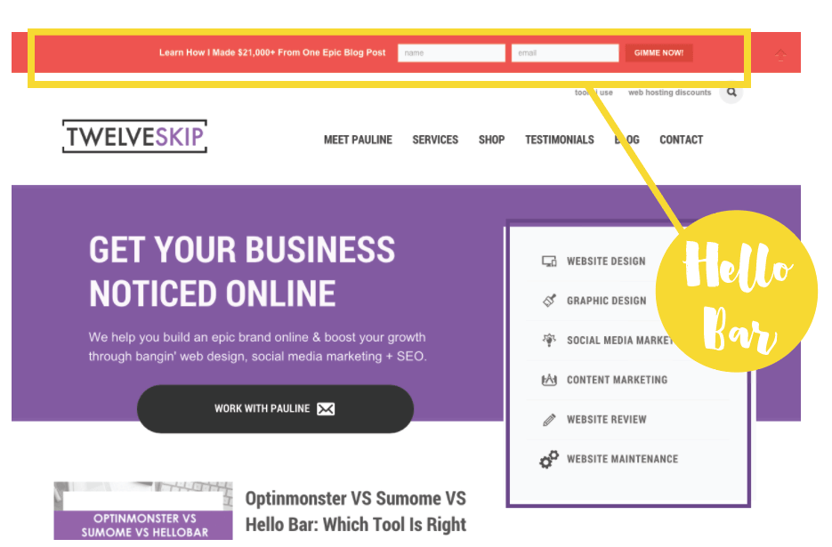 how to build a badass optin on your website